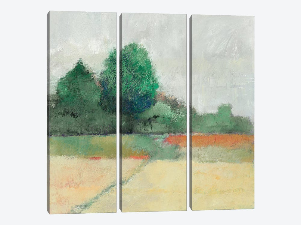 Path Through The Field by Avery Tillmon 3-piece Canvas Wall Art
