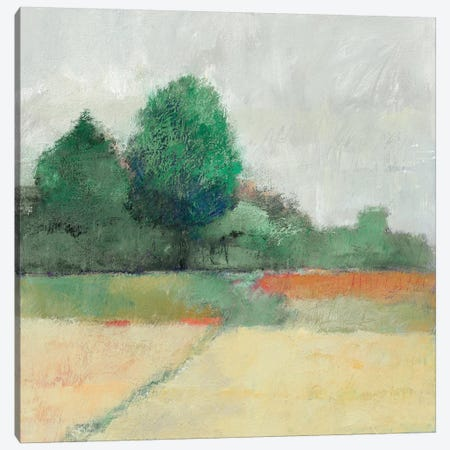 Path Through The Field Canvas Print #WAC5814} by Avery Tillmon Canvas Artwork