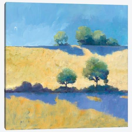 Shadows Canvas Print #WAC5815} by Avery Tillmon Canvas Art