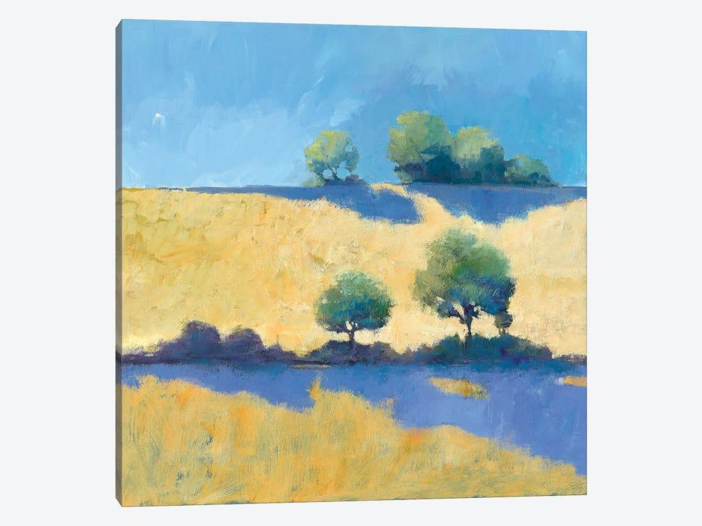 Shadows by Avery Tillmon 1-piece Canvas Art Print