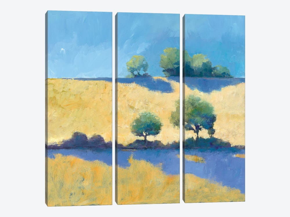 Shadows by Avery Tillmon 3-piece Art Print