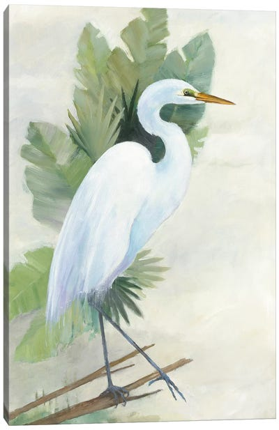 Standing Egret I Canvas Art Print