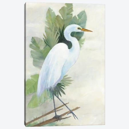 Standing Egret I Canvas Print #WAC5816} by Avery Tillmon Canvas Wall Art