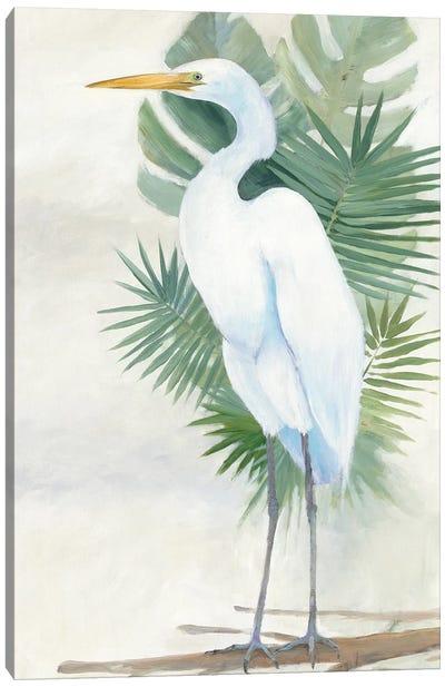 Standing Egret II Canvas Art Print