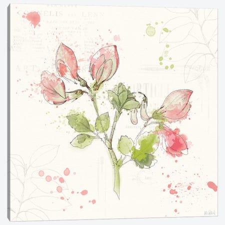 Floral Splash II Canvas Print #WAC5819} by Katie Pertiet Canvas Print