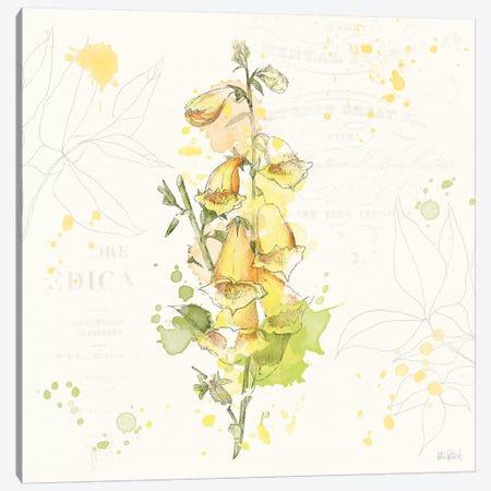 Floral Splash IV Canvas Print #WAC5821} by Katie Pertiet Canvas Art