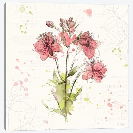 Floral Splash V Canvas Print #WAC5822} by Katie Pertiet Canvas Artwork