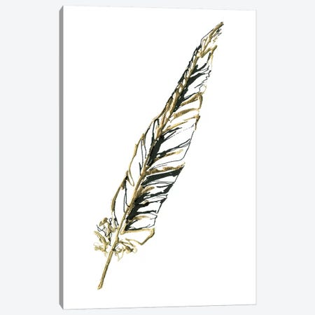 Gilded Swan Feather II Canvas Print #WAC5826} by Chris Paschke Canvas Art Print