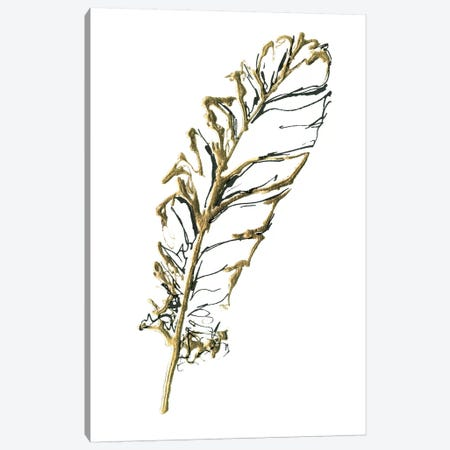 Gilded Turkey Feather I Canvas Print #WAC5827} by Chris Paschke Art Print