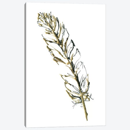 Gilded Turkey Feather II Canvas Print #WAC5828} by Chris Paschke Canvas Art