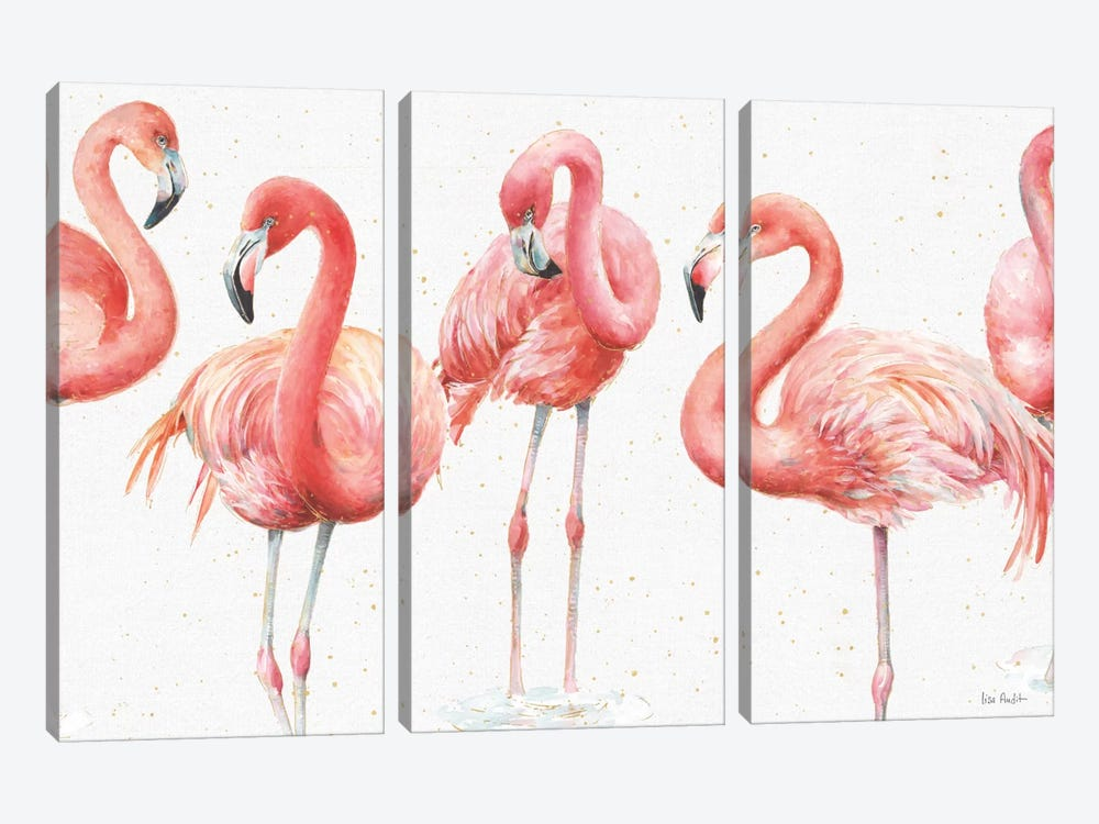 Gracefully Pink VIII by Lisa Audit 3-piece Canvas Art