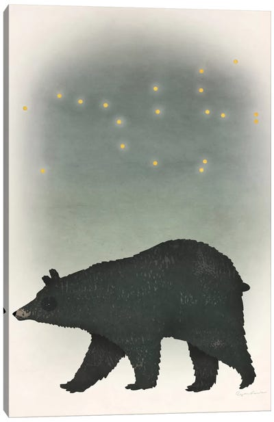 Ursa Major Canvas Art Print