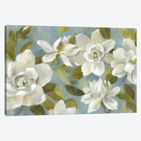 Gardenias On Slate Blue Canvas Print #WAC5885} by Silvia Vassileva Art Print