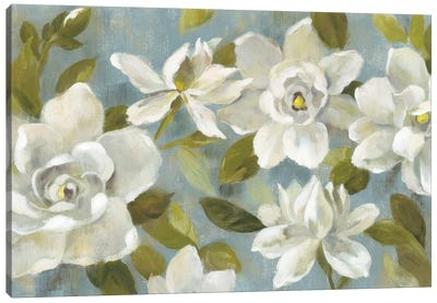 Gardenias On Slate Blue Canvas Print #WAC5885