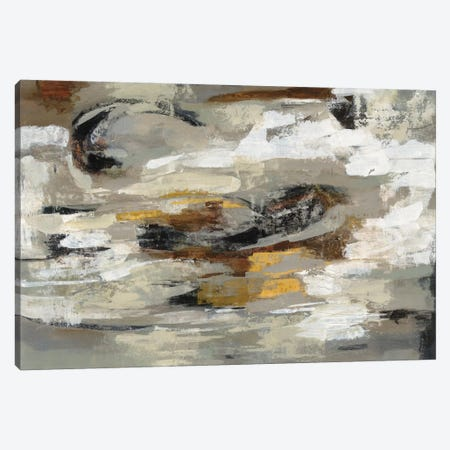 Neutral & Gray Abstract Canvas Print #WAC5886} by Silvia Vassileva Art Print