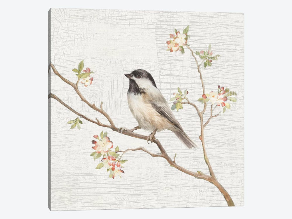 Vintage Black Capped Chickadee by Danhui Nai 1-piece Canvas Print
