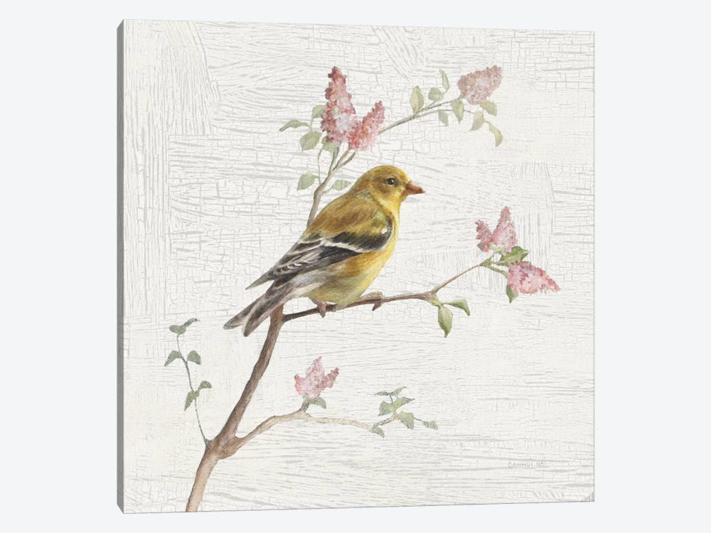 Vintage Female Goldfinch by Danhui Nai 1-piece Canvas Wall Art