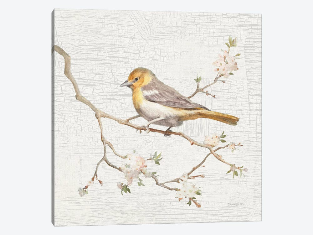 Vintage Northern Oriole by Danhui Nai 1-piece Canvas Art