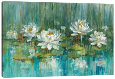 Water Lily Pond Canvas Art Print