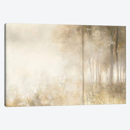 Edge Of The Woods Canvas Print #WAC5908} by Julia Purinton Art Print