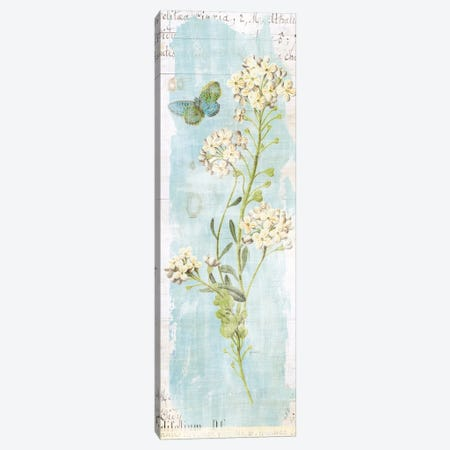Botany Blue III Canvas Print #WAC5924} by Sue Schlabach Canvas Artwork