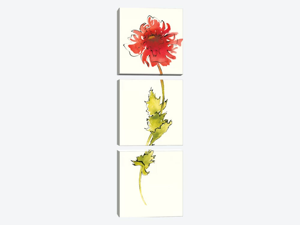 Peony Poppies II by Shirley Novak 3-piece Canvas Art