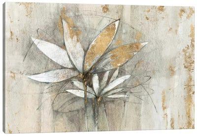 Golden Windflowers Canvas Art Print