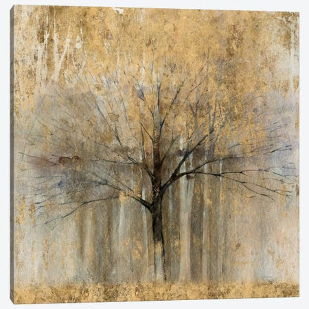 Open Arms Of Gold II Canvas Print #WAC5950} by Avery Tillmon Canvas Art