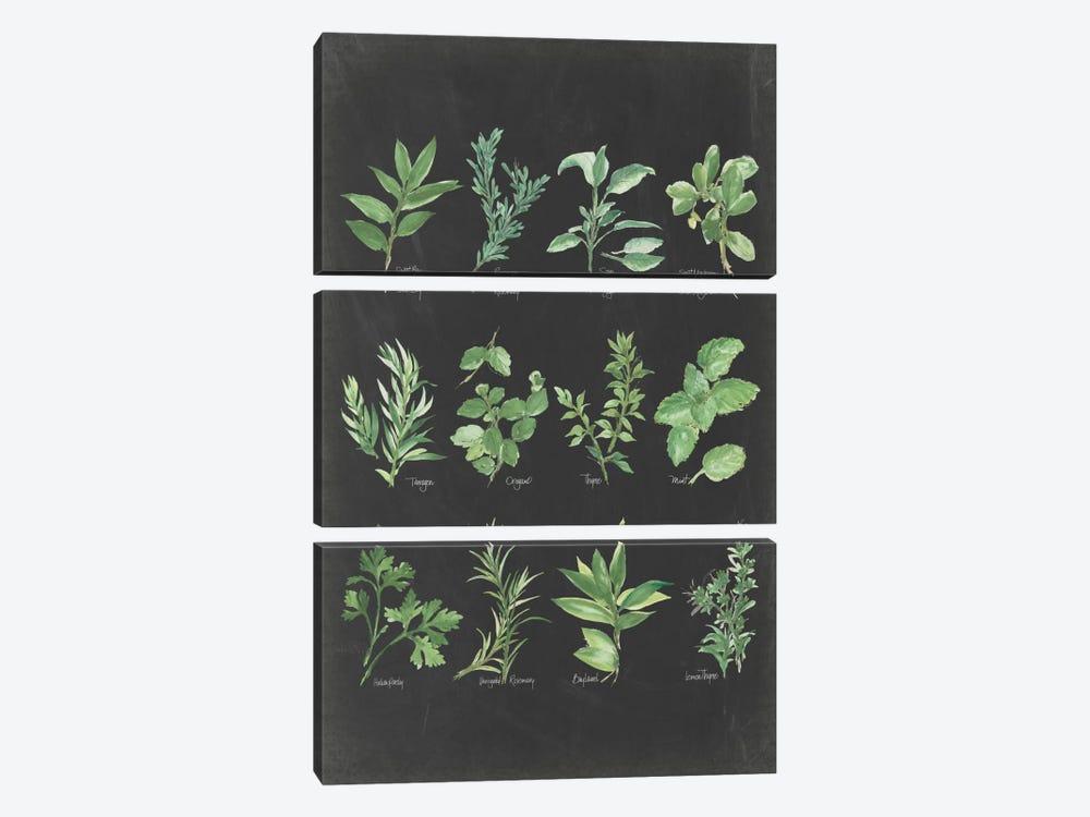 Herb Chart II by Chris Paschke 3-piece Art Print