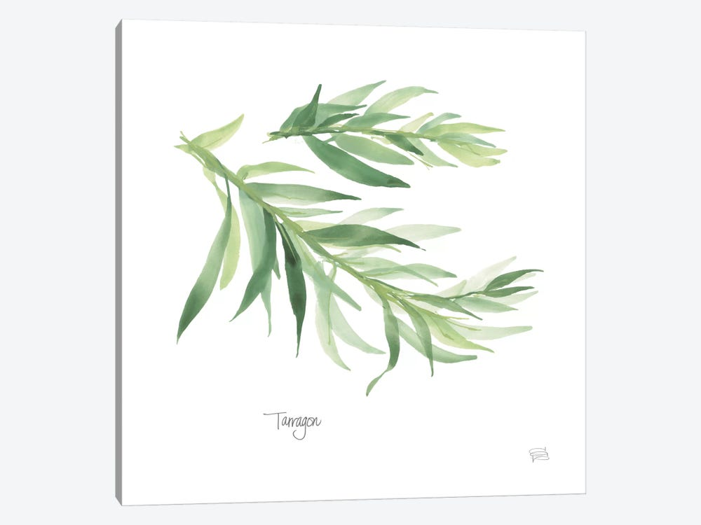Tarragon 1-piece Canvas Art Print