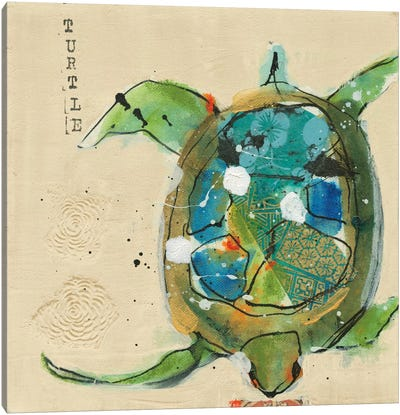 Chentes Turtle Canvas Art Print