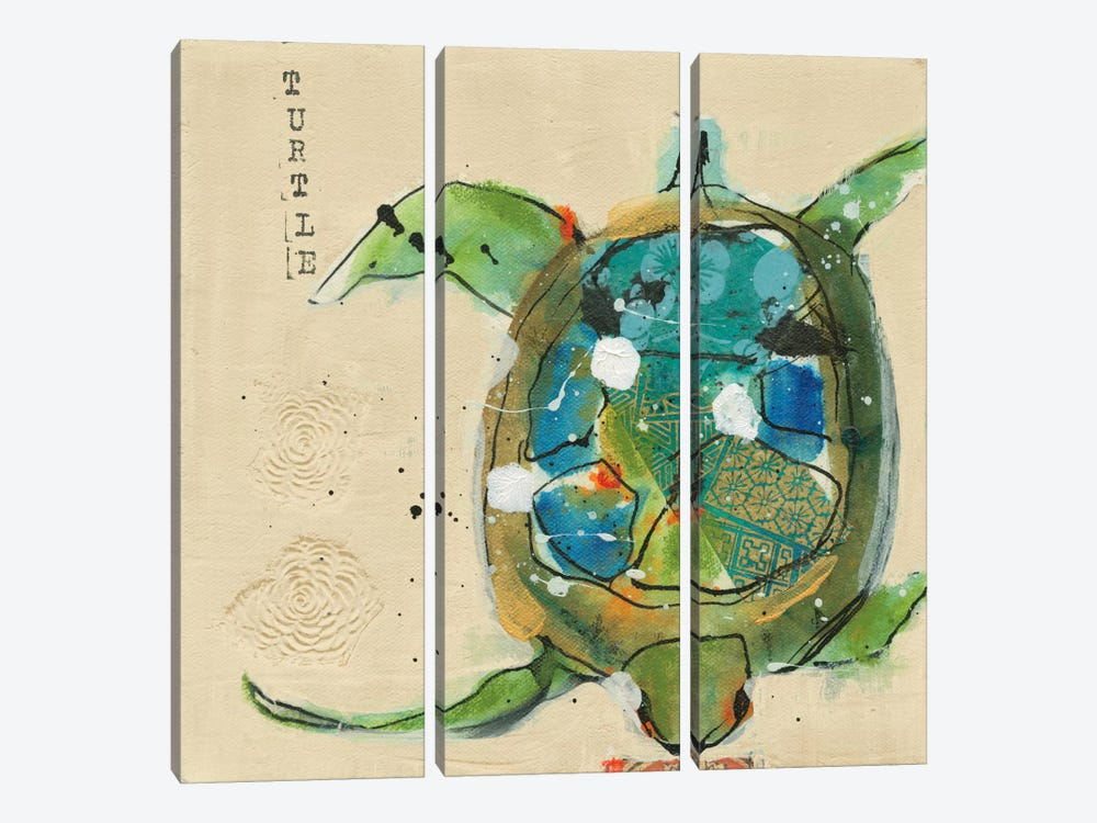 Chentes Turtle by Kellie Day 3-piece Canvas Art Print