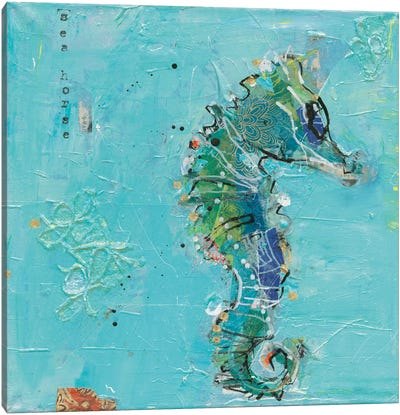 Little Seahorse Canvas Art Print