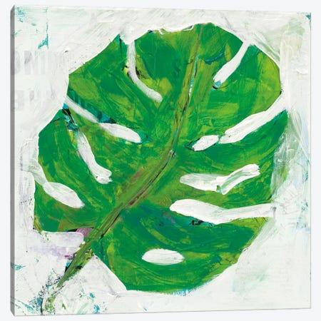 Single Leaf Play I Canvas Print #WAC5976} by Kellie Day Canvas Print