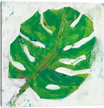Single Leaf Play I Canvas Art Print