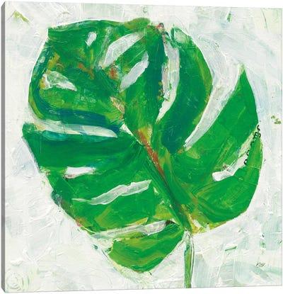 Single Leaf Play II Canvas Print #WAC5977