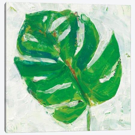 Single Leaf Play II Canvas Print #WAC5977} by Kellie Day Canvas Print