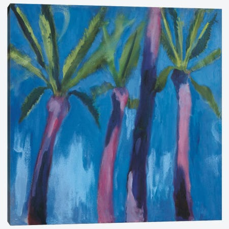 Palm Trees With Pink Canvas Print #WAC5993} by Michael Clark Canvas Wall Art