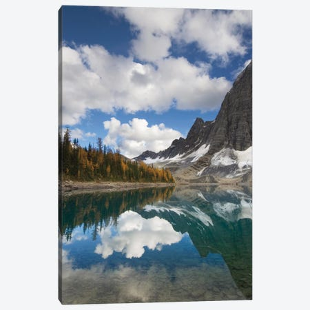 Floe Lake Reflection I Canvas Print #WAC5999} by Alan Majchrowicz Canvas Wall Art