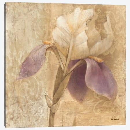 Brocade Iris Canvas Print #WAC59} by Albena Hristova Canvas Artwork