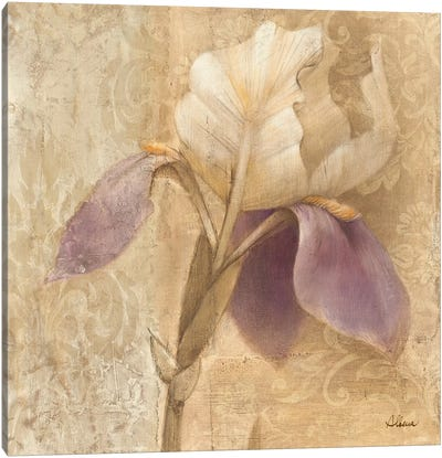 Brocade Iris Canvas Art Print