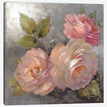 Roses On Gray II Canvas Print #WAC6006} by Peter McGowan Art Print