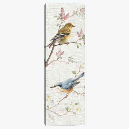 Vintage Birds Panel I Canvas Print #WAC6032} by Danhui Nai Art Print