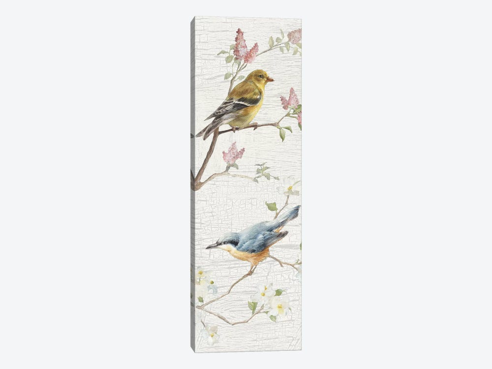 Vintage Birds Panel I by Danhui Nai 1-piece Canvas Print