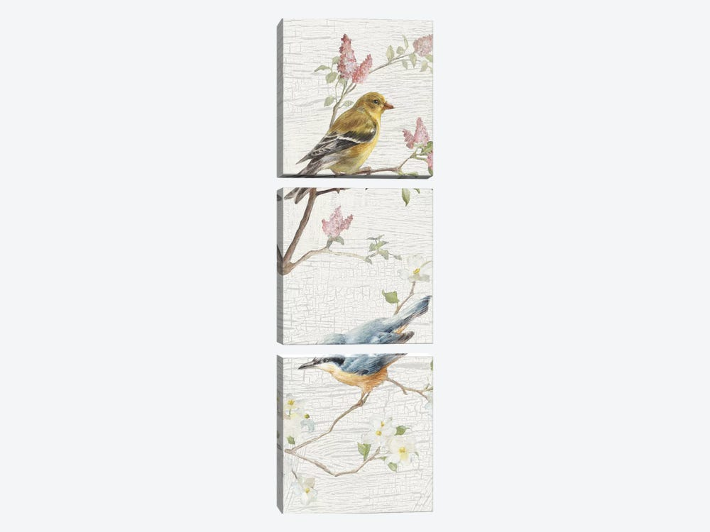 Vintage Birds Panel I by Danhui Nai 3-piece Canvas Print