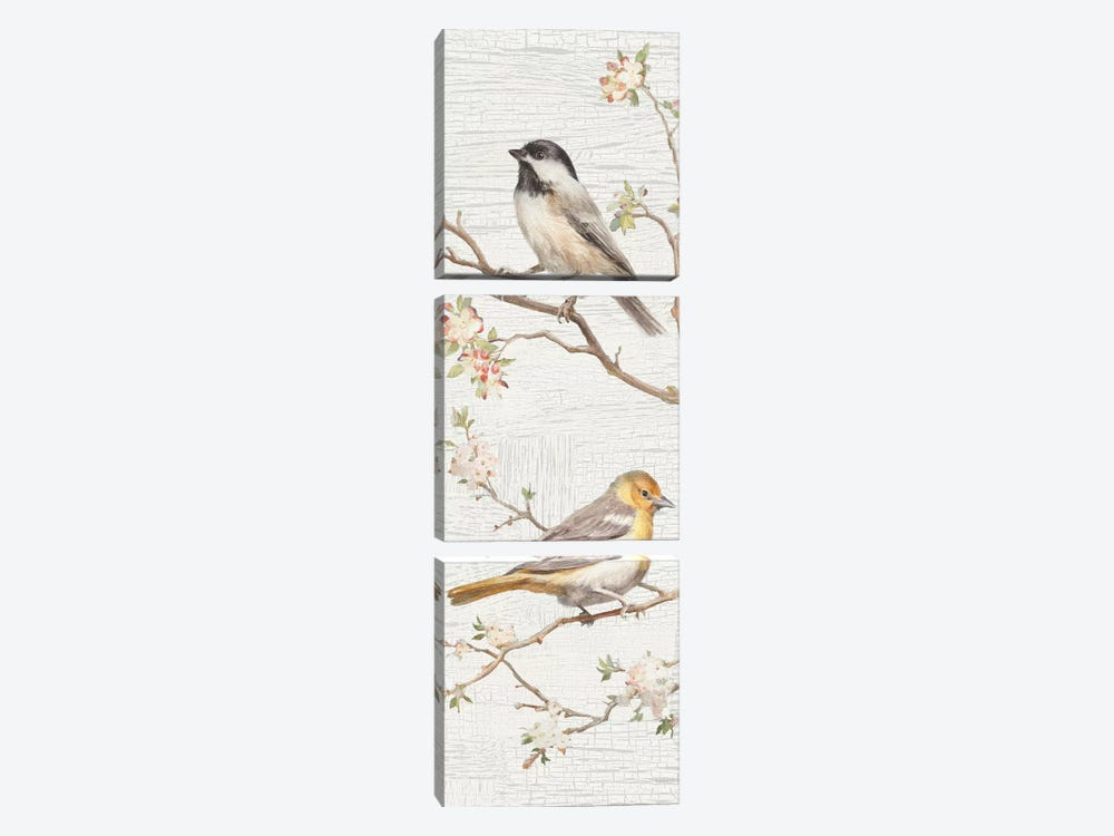 Vintage Birds Panel II by Danhui Nai 3-piece Canvas Art