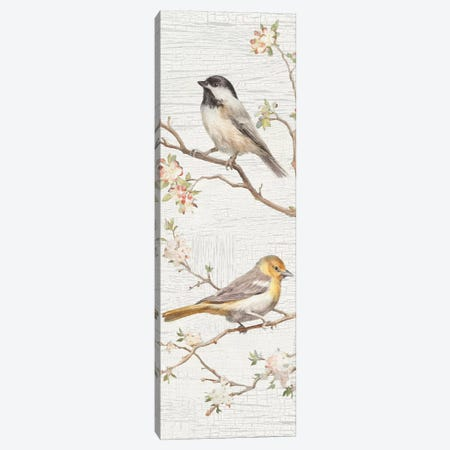 Vintage Birds Panel II Canvas Print #WAC6033} by Danhui Nai Canvas Art Print