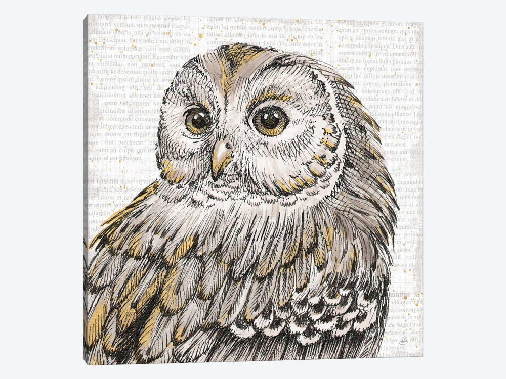 Beautiful Owls I by Daphne Brissonnet 1-piece Art Print