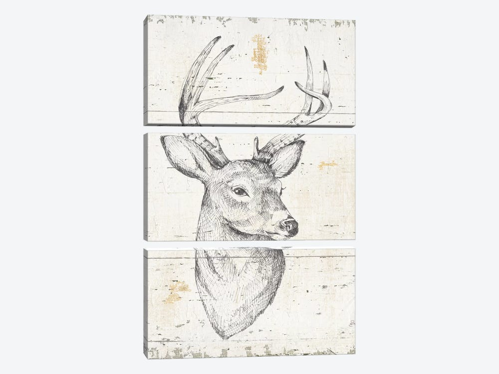 Wild & Beautiful I by Daphne Brissonnet 3-piece Canvas Wall Art