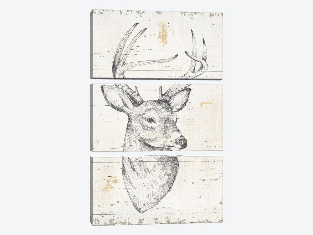 Wild & Beautiful I by Daphne Brissonnet 3-piece Canvas Wall Art